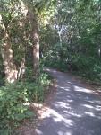 07-path